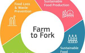 Launch by the EU of two important strategies – Biodiversity Strategy and Farm to Fork Strategy